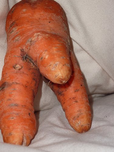 sexy carrot