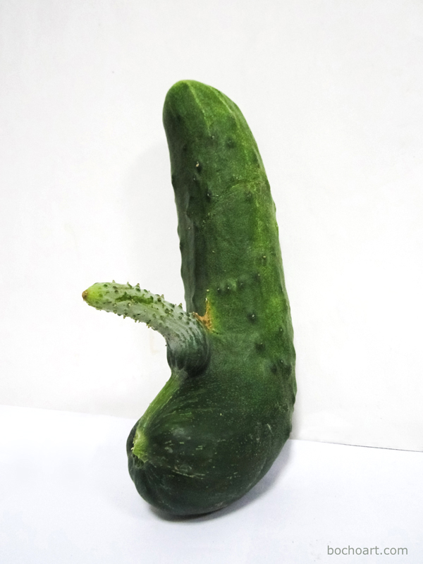 cucumber with small penis