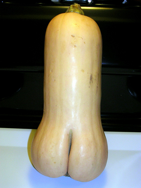 erotic penis-shaped squash