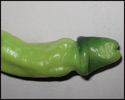 erotic pepper
