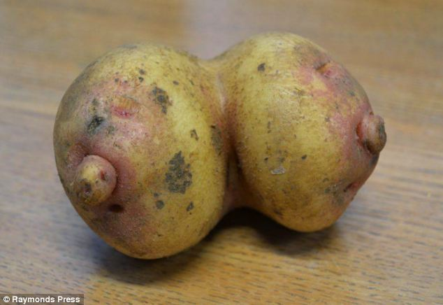 breast potato