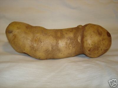 penis potato on ebay
